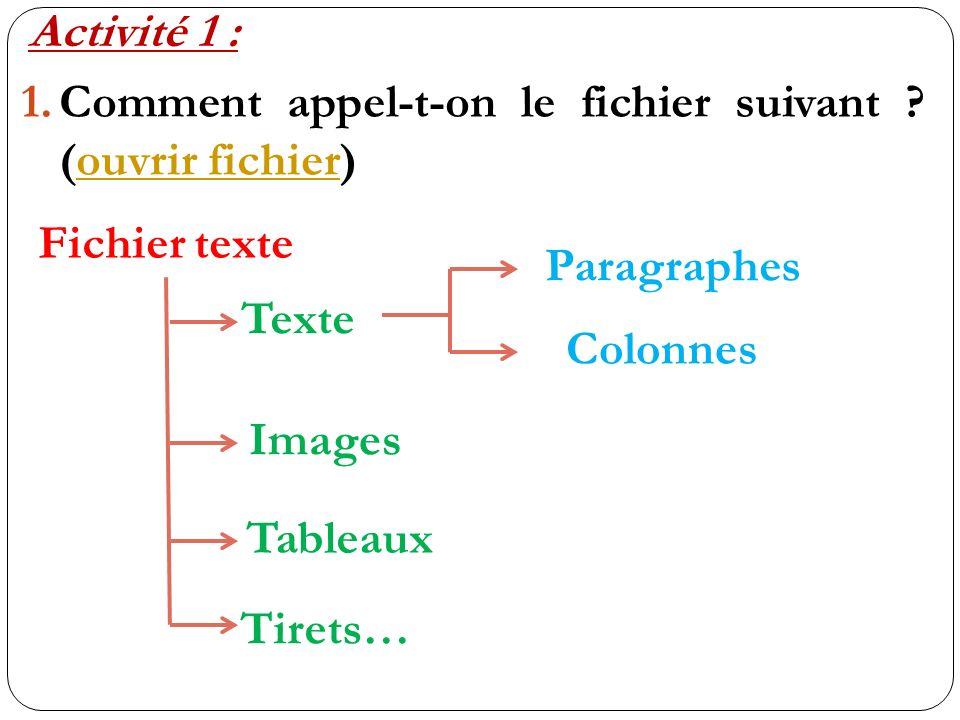 Activité 1 : Comment appel-t-on le fichier suivant (ouvrir fichier) Fichier texte. Paragraphes.