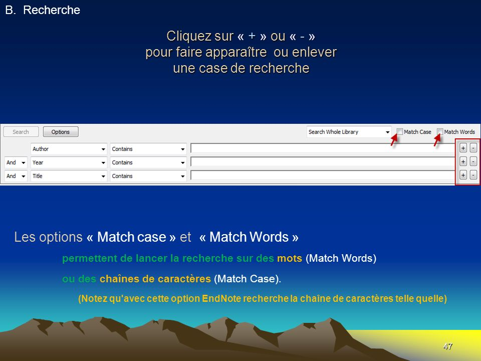 Les options « Match case » et « Match Words »
