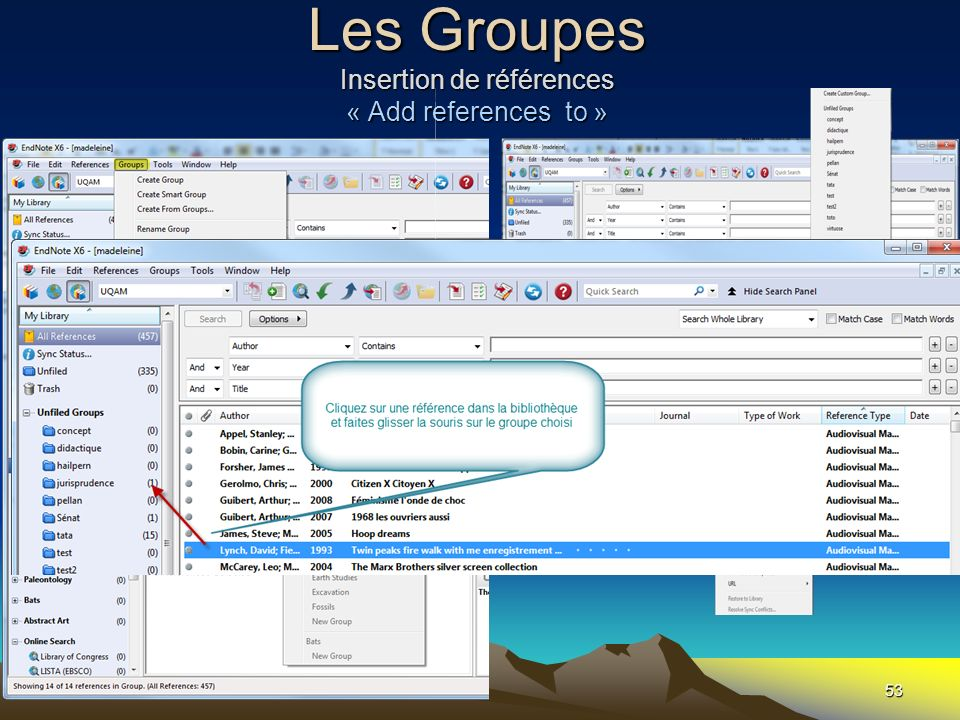 Les Groupes Insertion de références « Add references to »