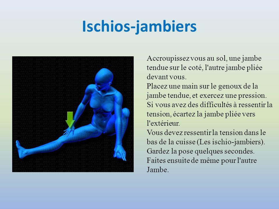 Ischios-jambiers Accroupissez vous au sol, une jambe tendue sur le coté, l autre jambe pliée devant vous.