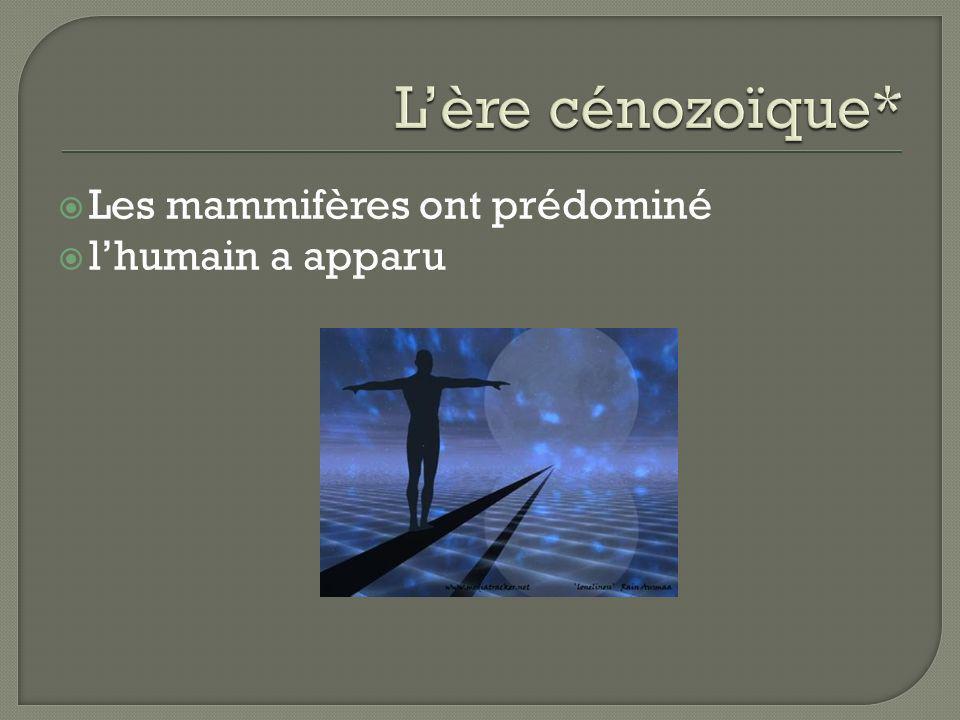 L'ère cénozoïque* Les mammifères ont prédominé l'humain a apparu