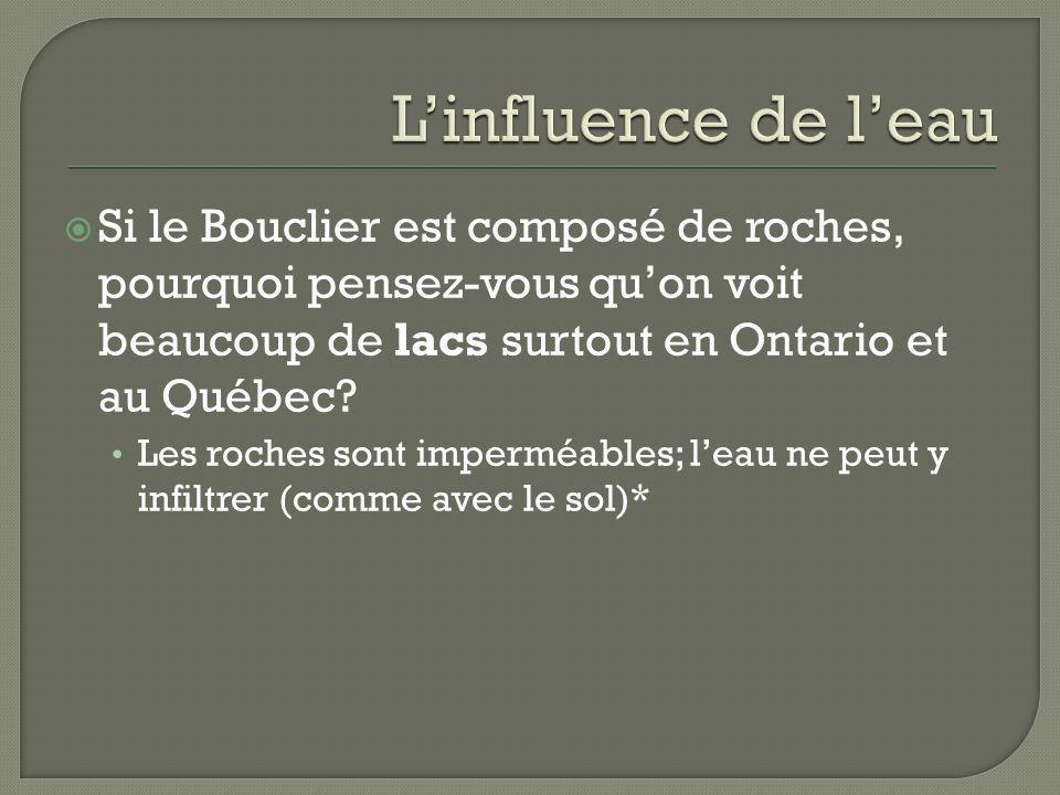 L'influence de l'eau Si le Bouclier est composé de roches, pourquoi pensez-vous qu'on voit beaucoup de lacs surtout en Ontario et au Québec