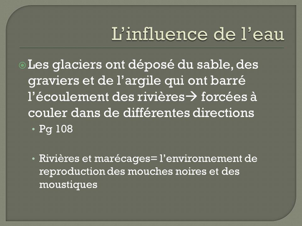 L'influence de l'eau