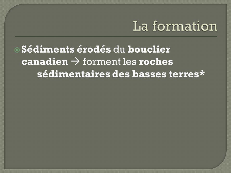 La formationSédiments érodés du bouclier canadien  forment les roches sédimentaires des basses terres*