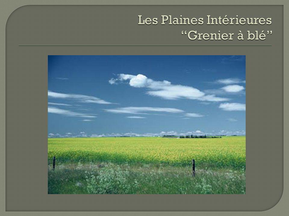 Les Plaines Intérieures Grenier à blé