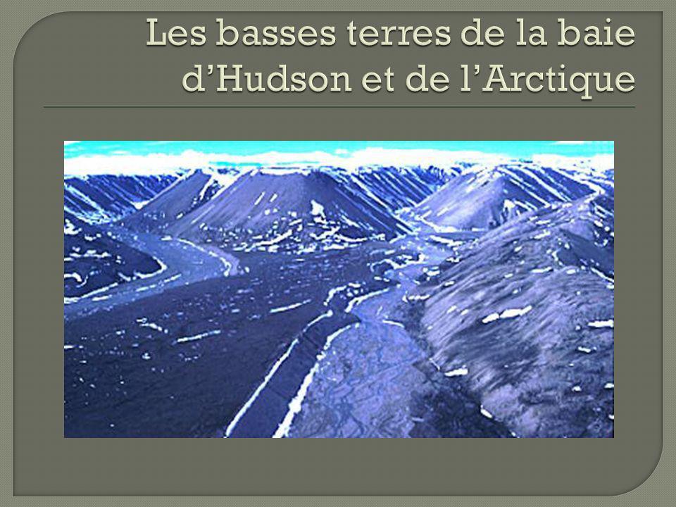Les basses terres de la baie d'Hudson et de l'Arctique