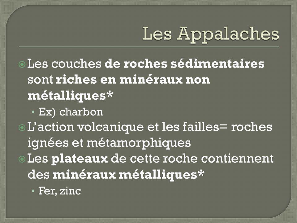Les AppalachesLes couches de roches sédimentaires sont riches en minéraux non métalliques* Ex) charbon.