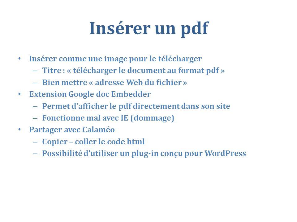 Insérer un pdf Insérer comme une image pour le télécharger