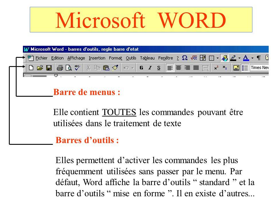 Microsoft WORD Barre de menus :