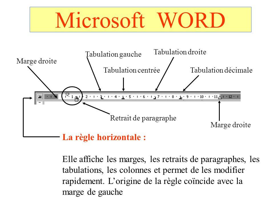 Microsoft WORD La règle horizontale :