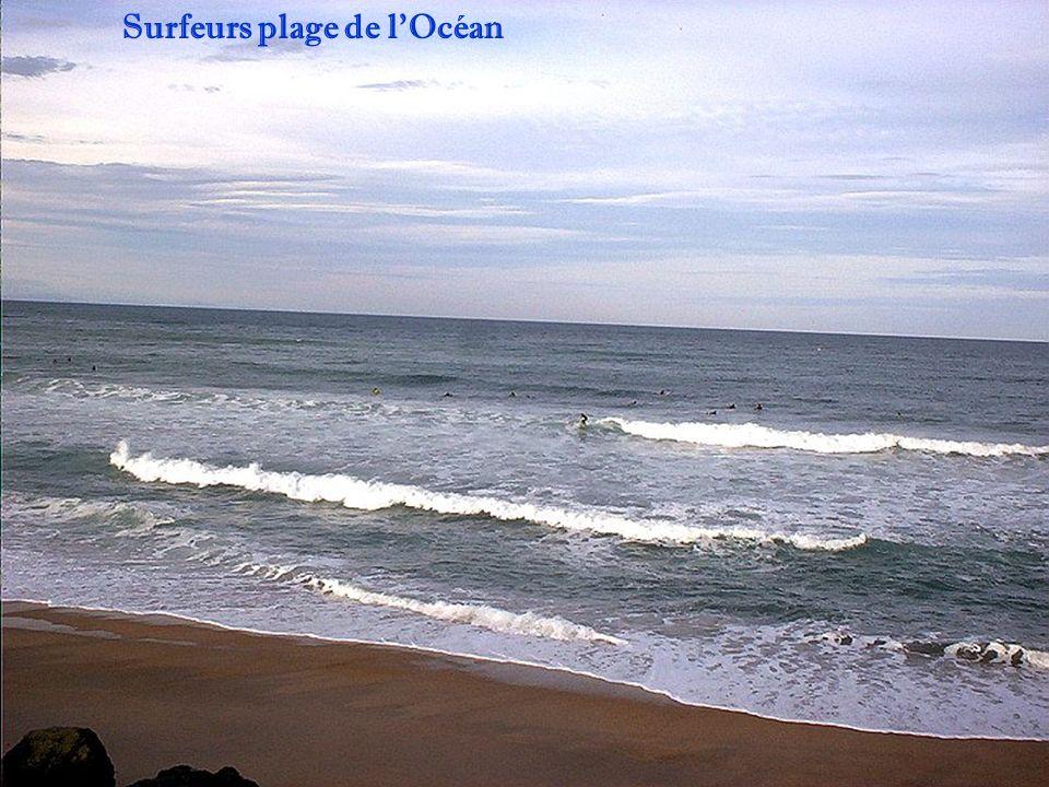 Surfeurs plage de l'Océan