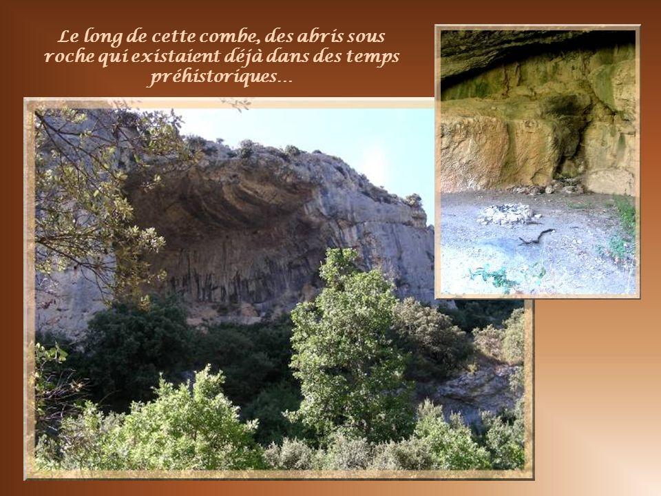 Le long de cette combe, des abris sous roche qui existaient déjà dans des temps préhistoriques…