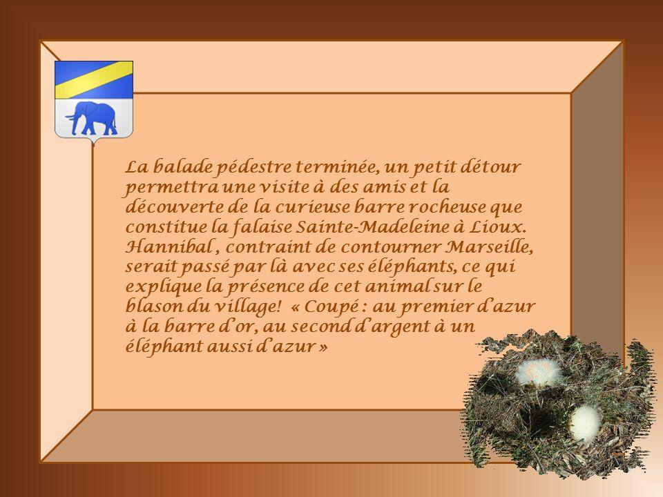 La balade pédestre terminée, un petit détour permettra une visite à des amis et la découverte de la curieuse barre rocheuse que constitue la falaise Sainte-Madeleine à Lioux.