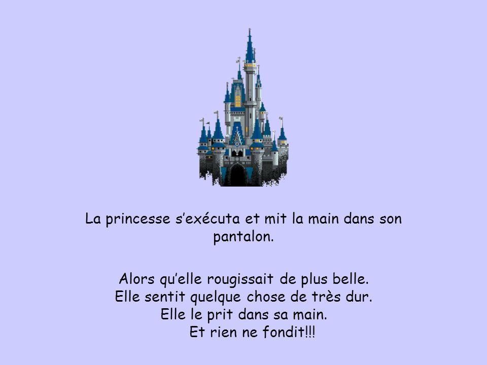 La princesse s'exécuta et mit la main dans son pantalon.