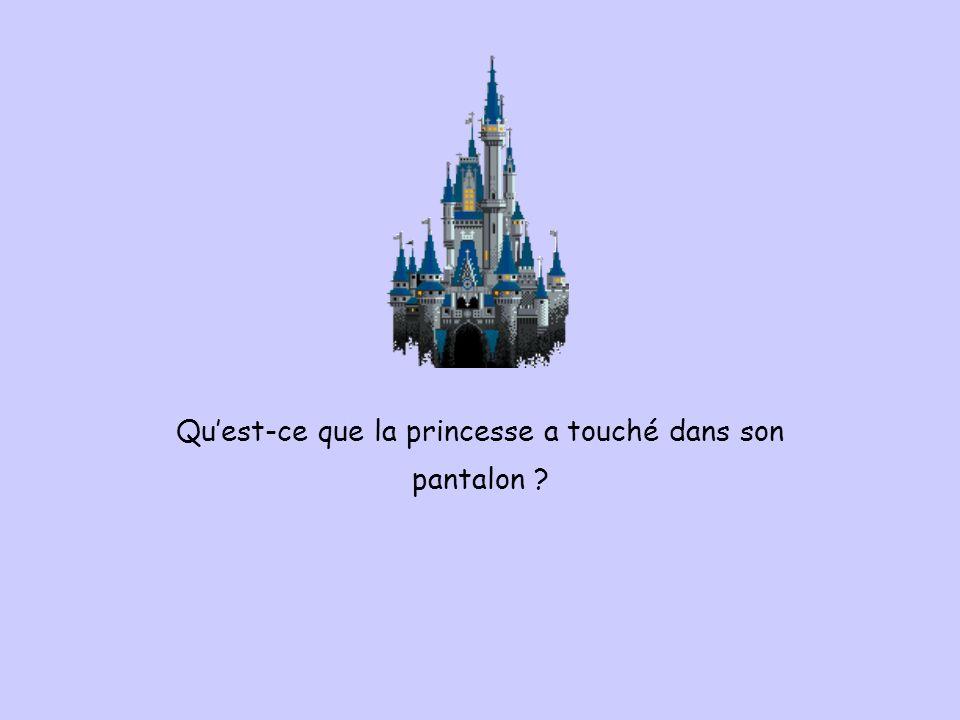 Qu'est-ce que la princesse a touché dans son pantalon