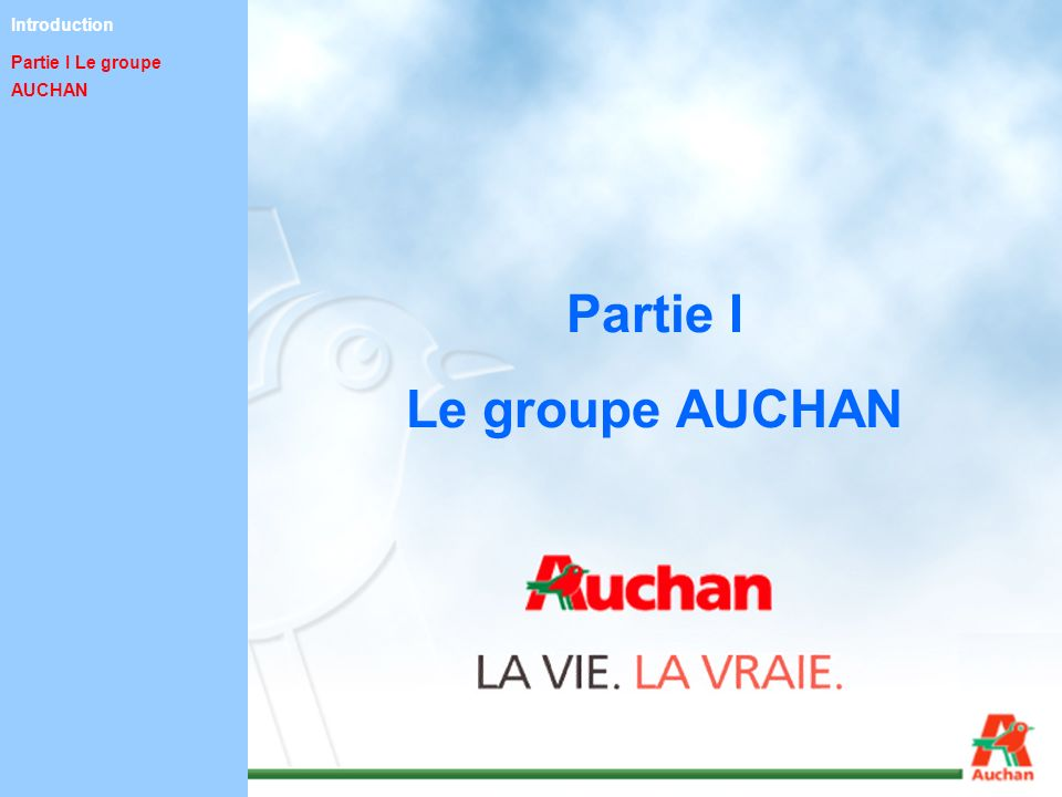 Partie I Le groupe AUCHAN