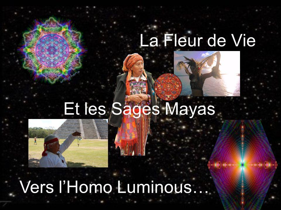La Fleur de Vie Et les Sages Mayas Vers l'Homo Luminous…