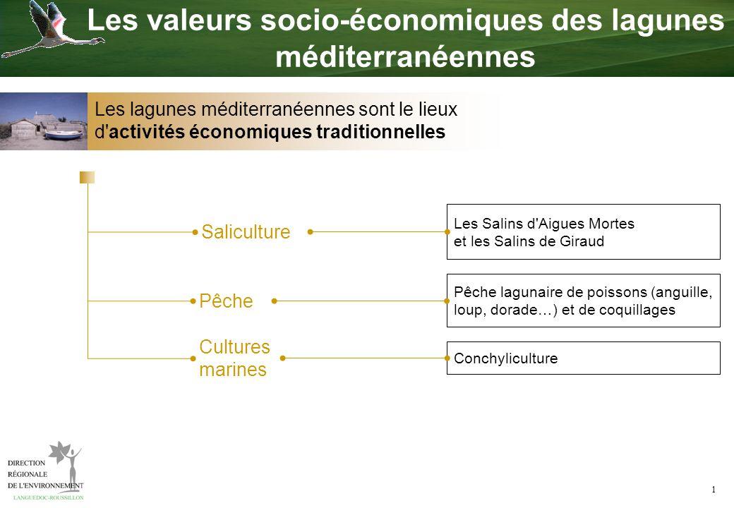 Les valeurs socio-économiques des lagunes méditerranéennes