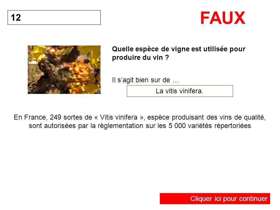 FAUX 12 Quelle espèce de vigne est utilisée pour produire du vin