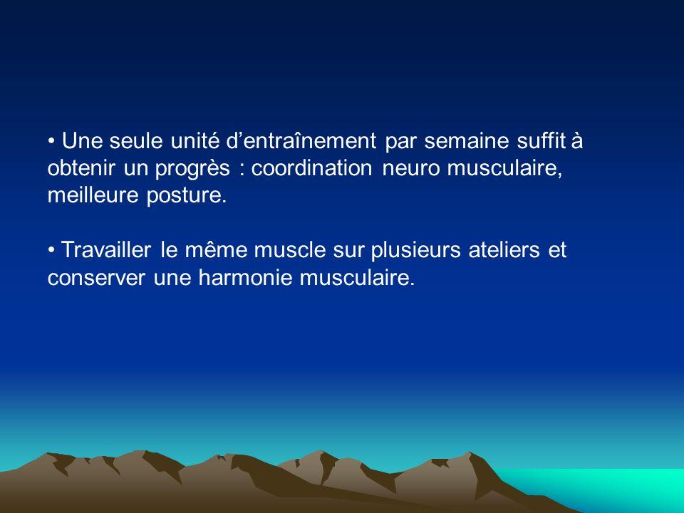 Une seule unité d'entraînement par semaine suffit à obtenir un progrès : coordination neuro musculaire, meilleure posture.