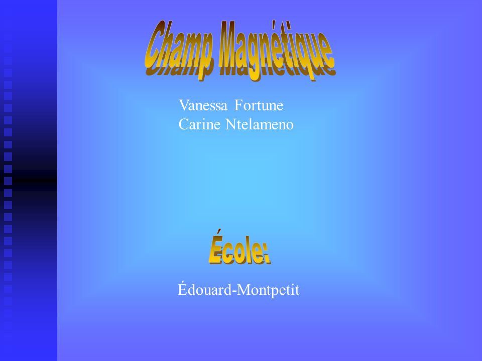 Champ Magnétique École: Vanessa Fortune Carine Ntelameno