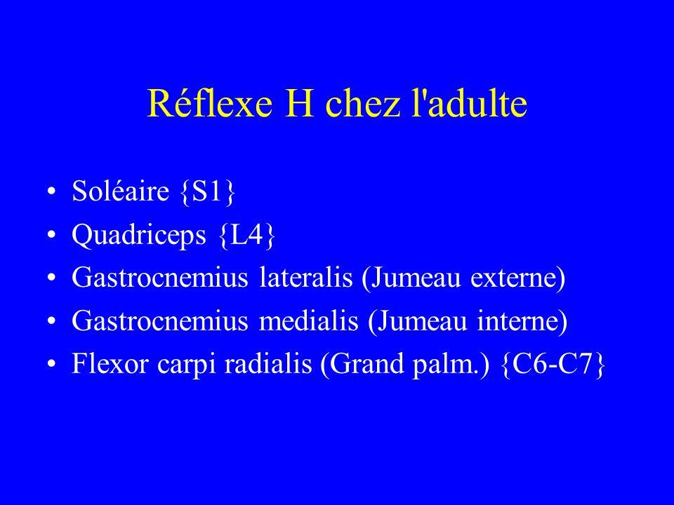 Réflexe H chez l adulte Soléaire {S1} Quadriceps {L4}