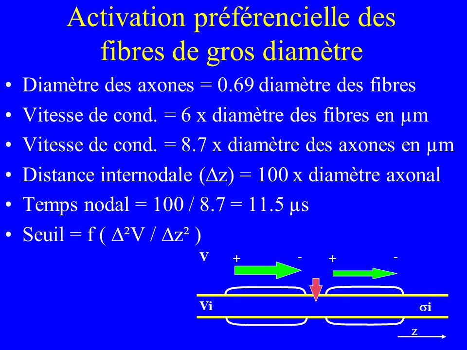 Activation préférencielle des fibres de gros diamètre