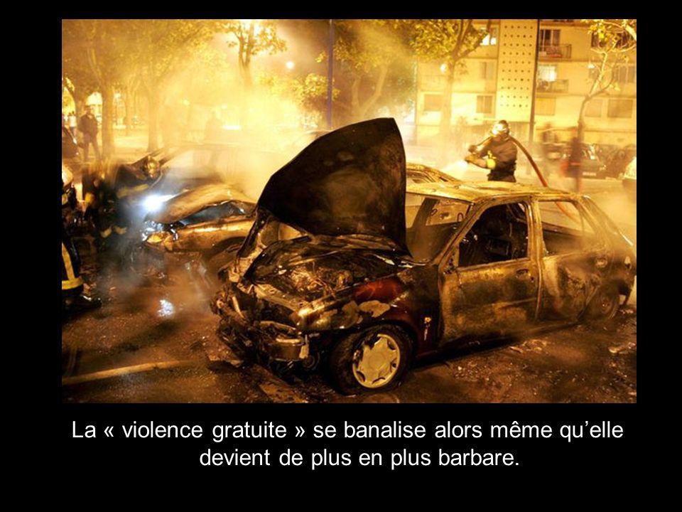 La « violence gratuite » se banalise alors même qu'elle devient de plus en plus barbare.