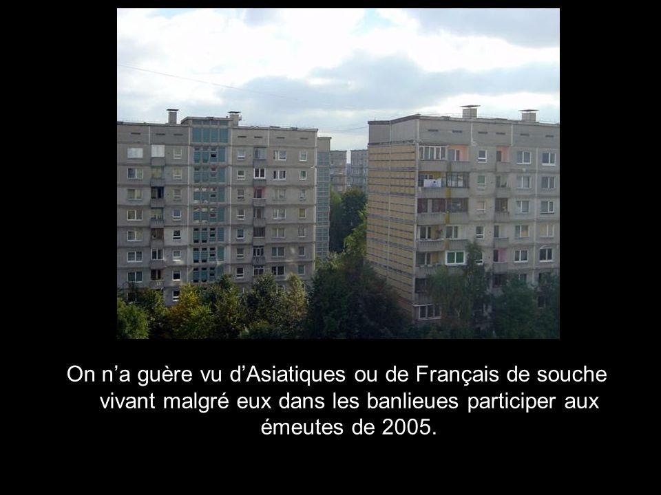 On n'a guère vu d'Asiatiques ou de Français de souche vivant malgré eux dans les banlieues participer aux émeutes de 2005.