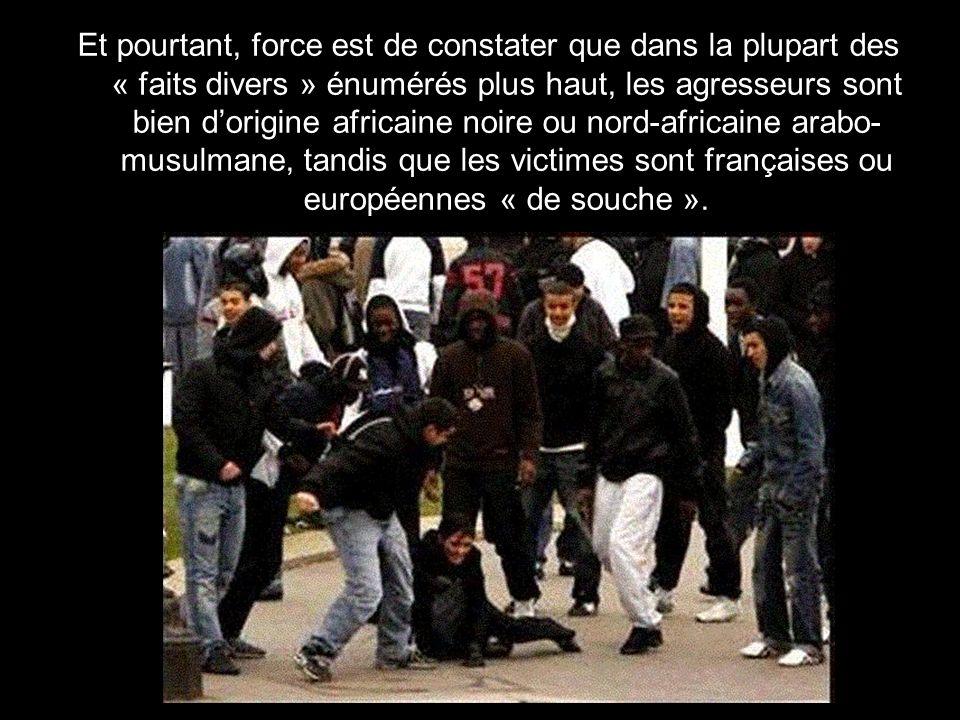 Et pourtant, force est de constater que dans la plupart des « faits divers » énumérés plus haut, les agresseurs sont bien d'origine africaine noire ou nord-africaine arabo-musulmane, tandis que les victimes sont françaises ou européennes « de souche ».