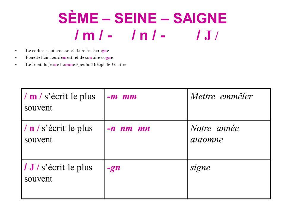SÈME – SEINE – SAIGNE / m / - / n / - / J /