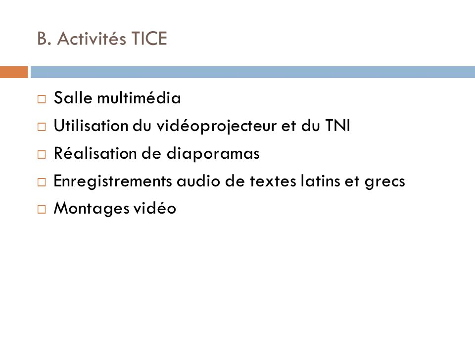 B. Activités TICE Salle multimédia
