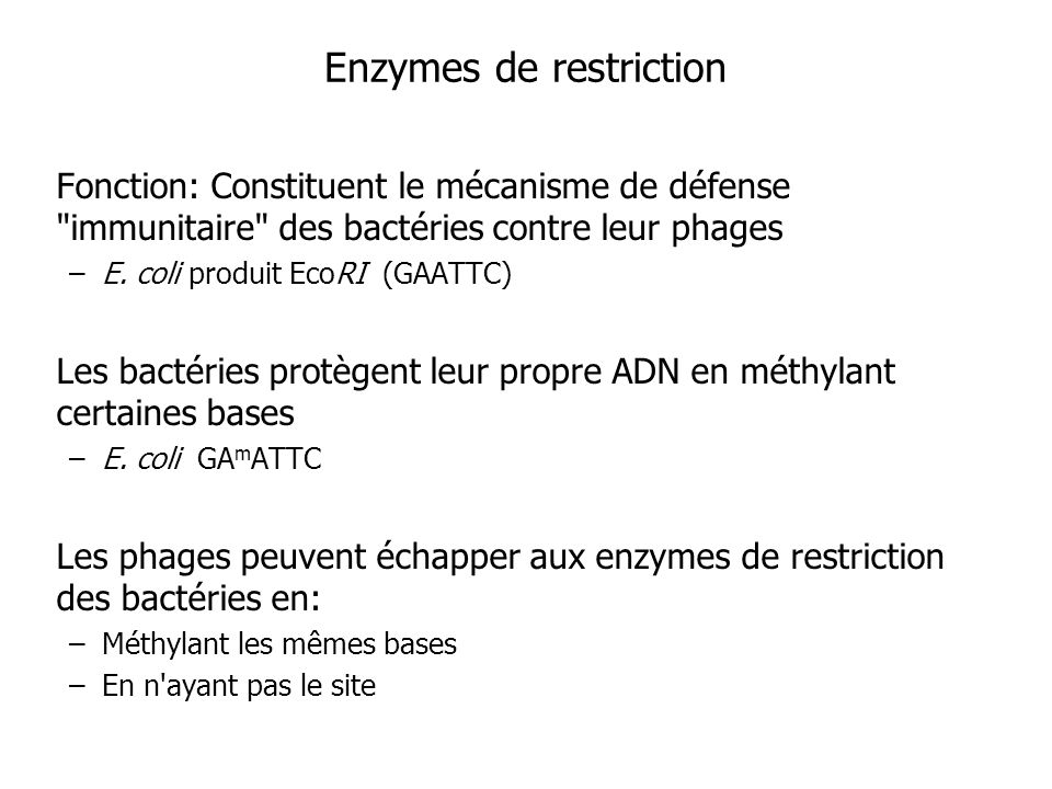 Enzymes de restriction