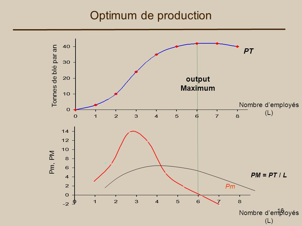 Optimum de production PT output Maximum Tonnes de blé par an