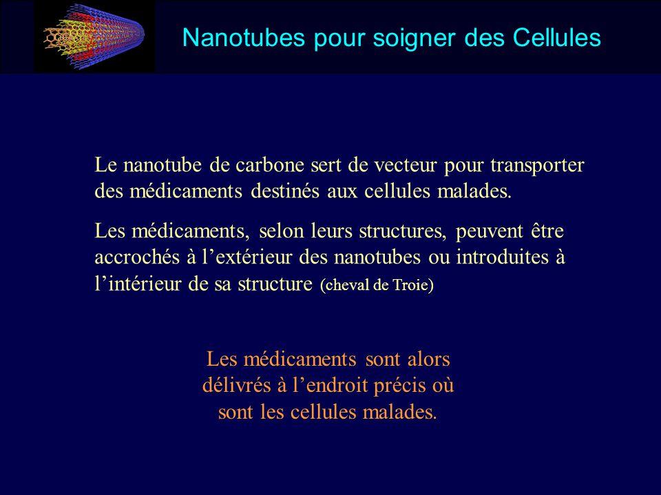 Nanotubes pour soigner des Cellules