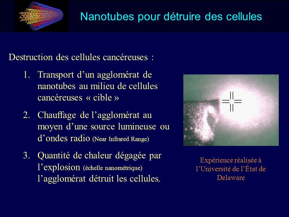 Nanotubes pour détruire des cellules