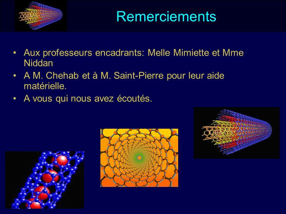 Remerciements Aux professeurs encadrants: Melle Mimiette et Mme Niddan