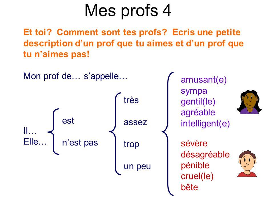 Mes profs 4 Et toi Comment sont tes profs Ecris une petite description d'un prof que tu aimes et d'un prof que tu n'aimes pas!