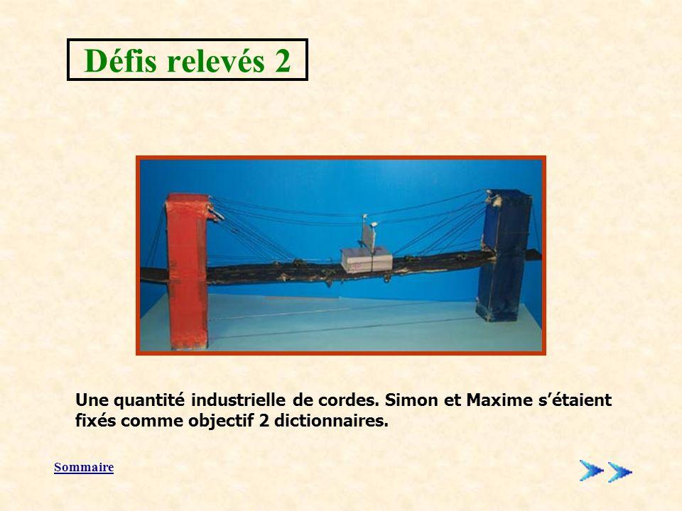 Défis relevés 2 Une quantité industrielle de cordes. Simon et Maxime s'étaient fixés comme objectif 2 dictionnaires.