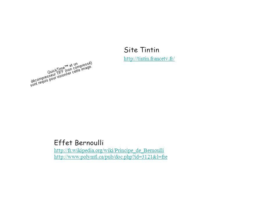 Site Tintin Effet Bernoulli http://tintin.francetv.fr/