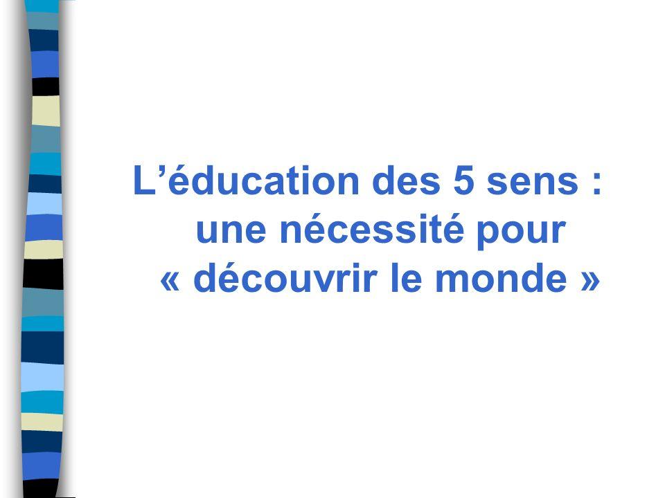 L'éducation des 5 sens : une nécessité pour « découvrir le monde »