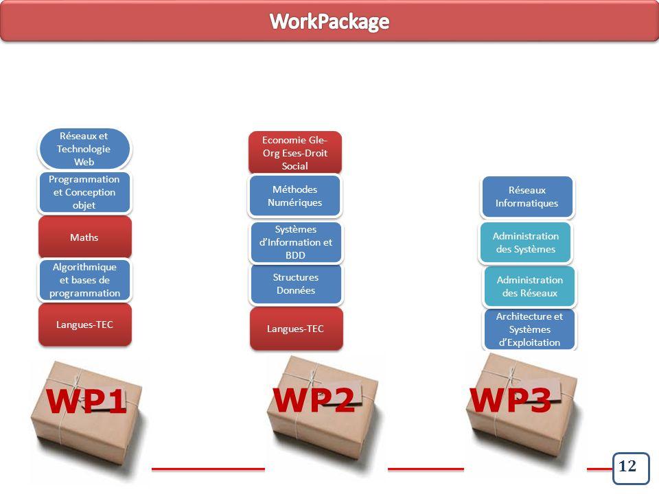 WP1 WP2 WP3 WorkPackage 12 Réseaux et Technologie Web