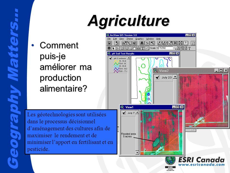 Agriculture Comment puis-je améliorer ma production alimentaire