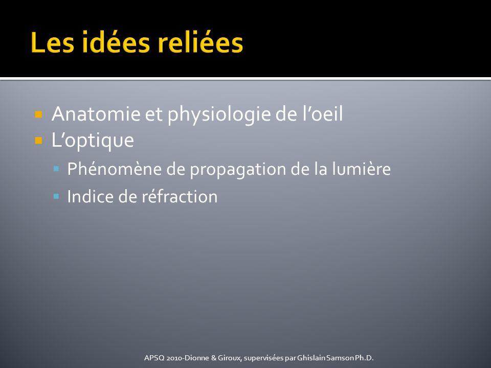 Les idées reliées Anatomie et physiologie de l'oeil L'optique