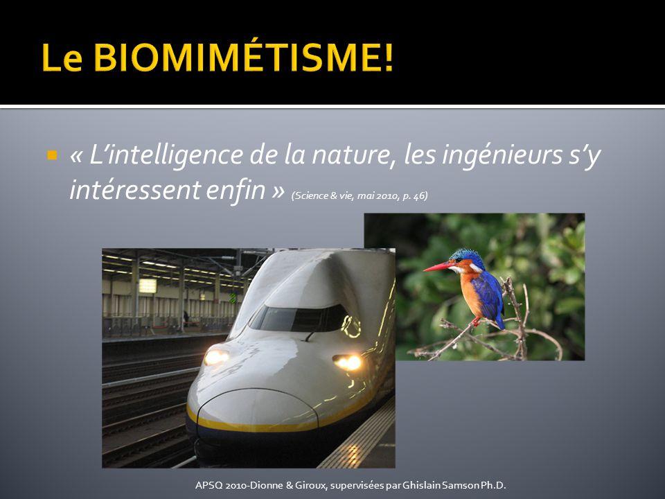 Le BIOMIMÉTISME! « L'intelligence de la nature, les ingénieurs s'y intéressent enfin » (Science & vie, mai 2010, p. 46)