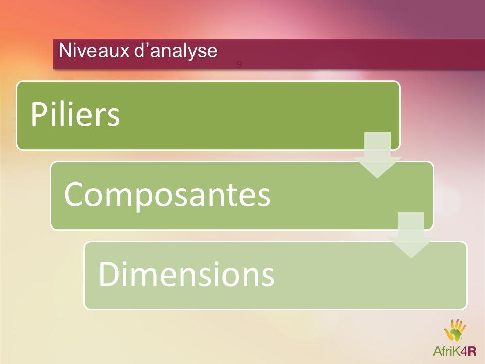 Niveaux d'analyse Piliers Composantes Dimensions