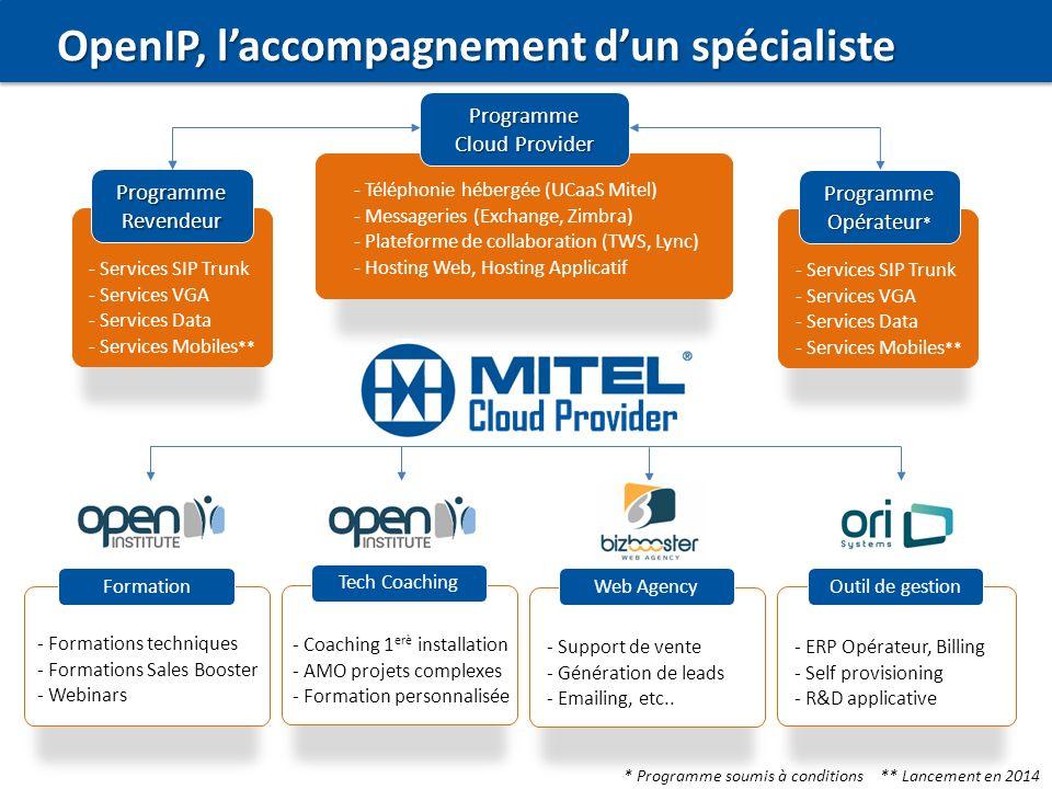 OpenIP, l'accompagnement d'un spécialiste