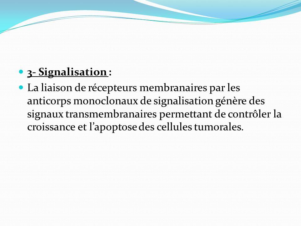3- Signalisation :