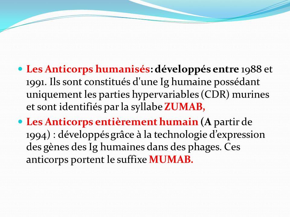 Les Anticorps humanisés: développés entre 1988 et 1991