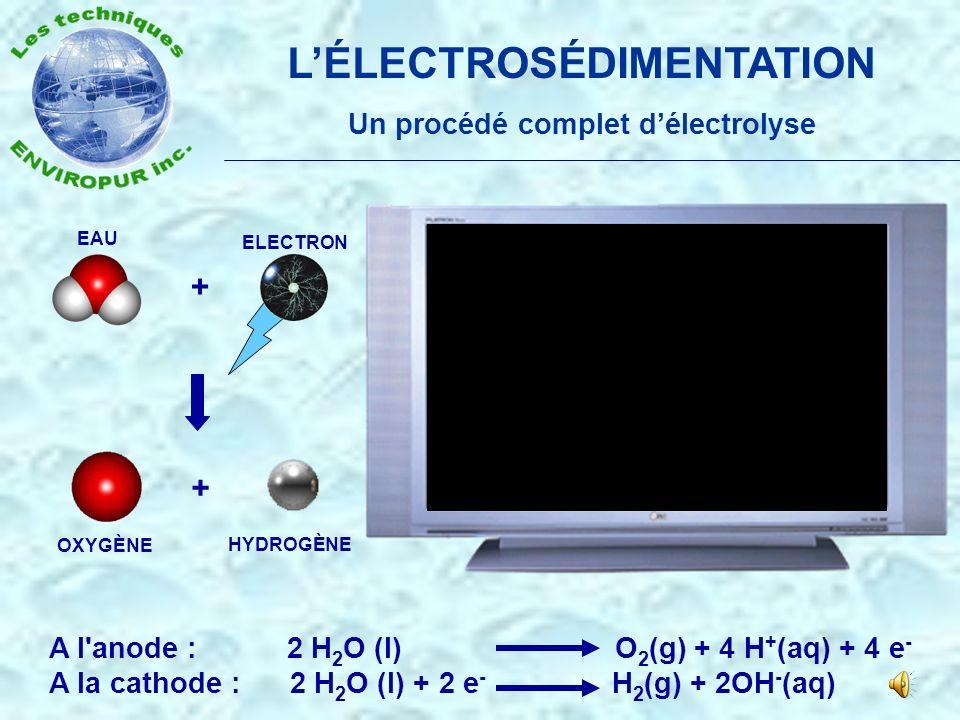 L'ÉLECTROSÉDIMENTATION Un procédé complet d'électrolyse